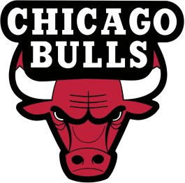 bulls logo